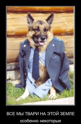 Полковник Собакин
