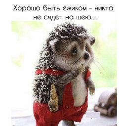 Mars Rakhmanov