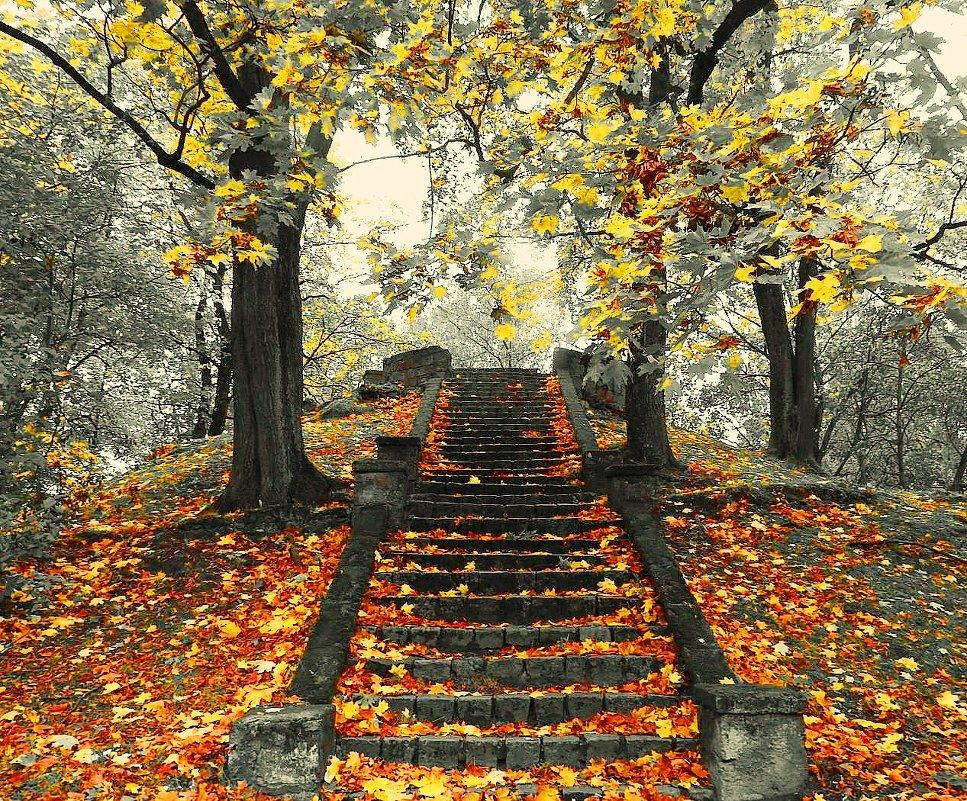Осенняя лестница - Александр Михайлов
