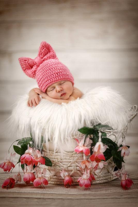 Тот самый сон младенца. - Elena Klimova