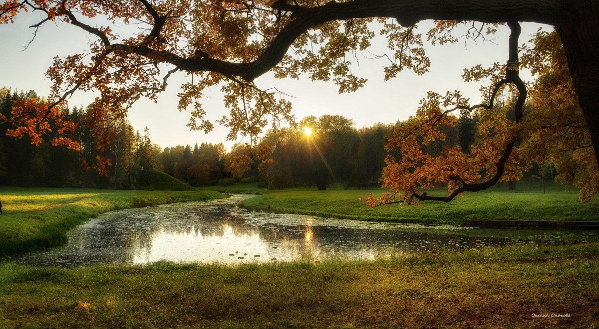 Осень ... - Оксана Онохова