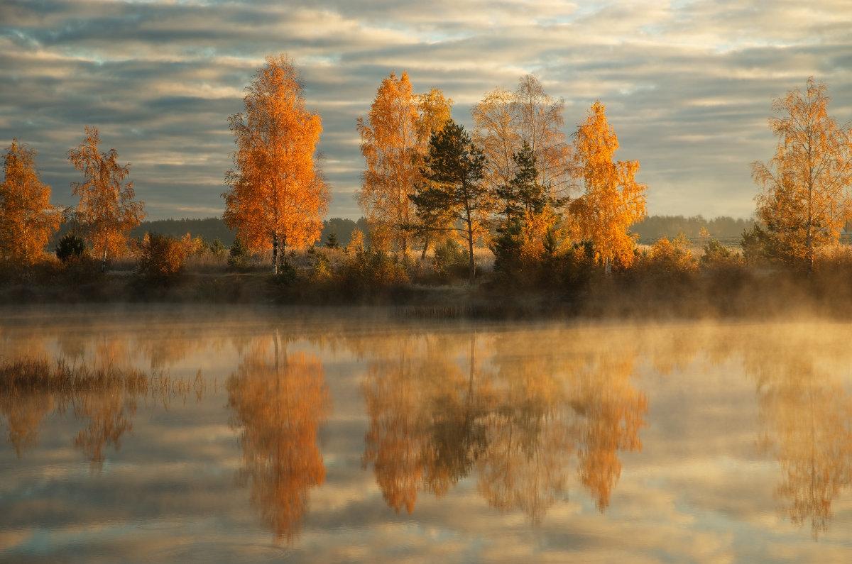 Осень золотая - Сергей ***