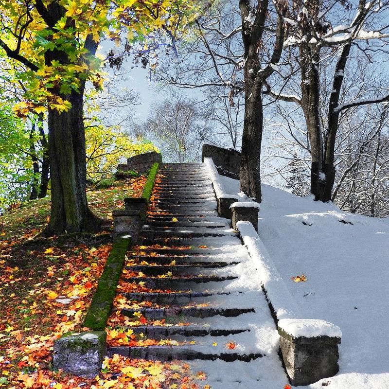 Осень-зима - Александр Михайлов