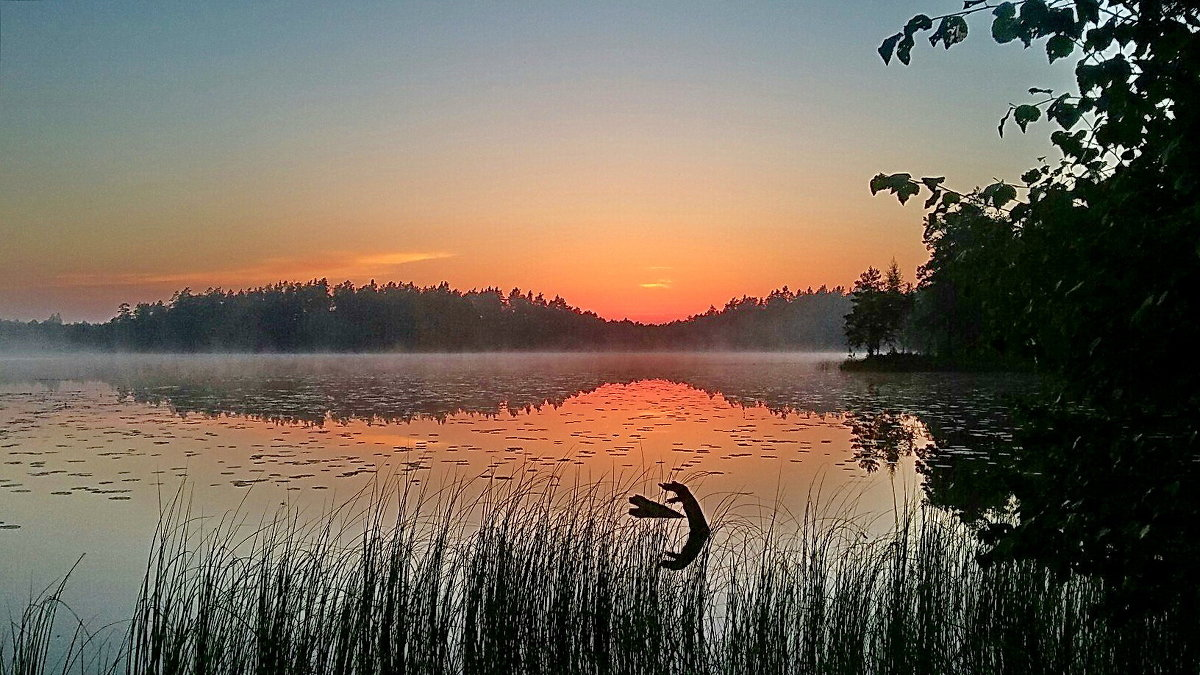 Утро - Александр