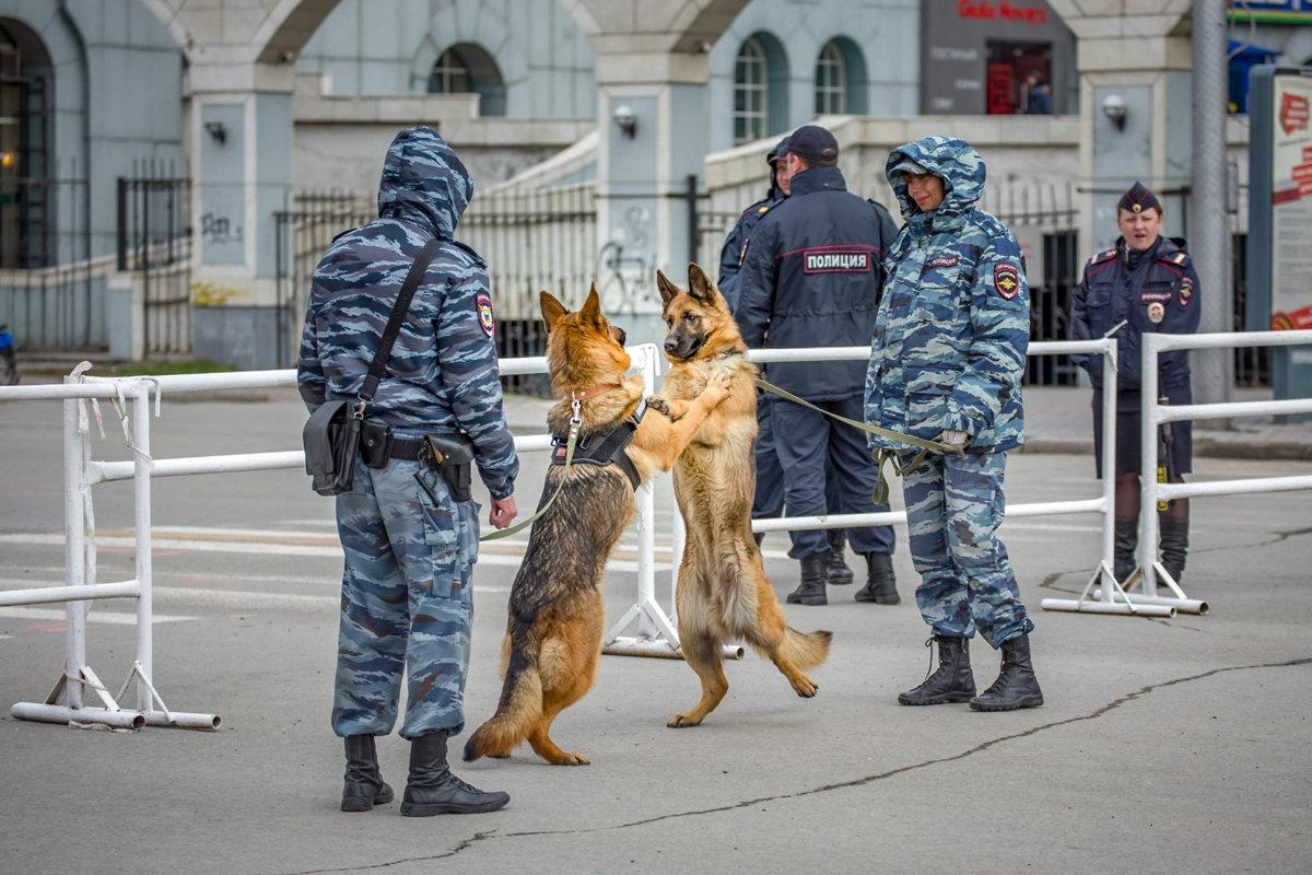 И на службе есть место дружбе... - Елена Черненко