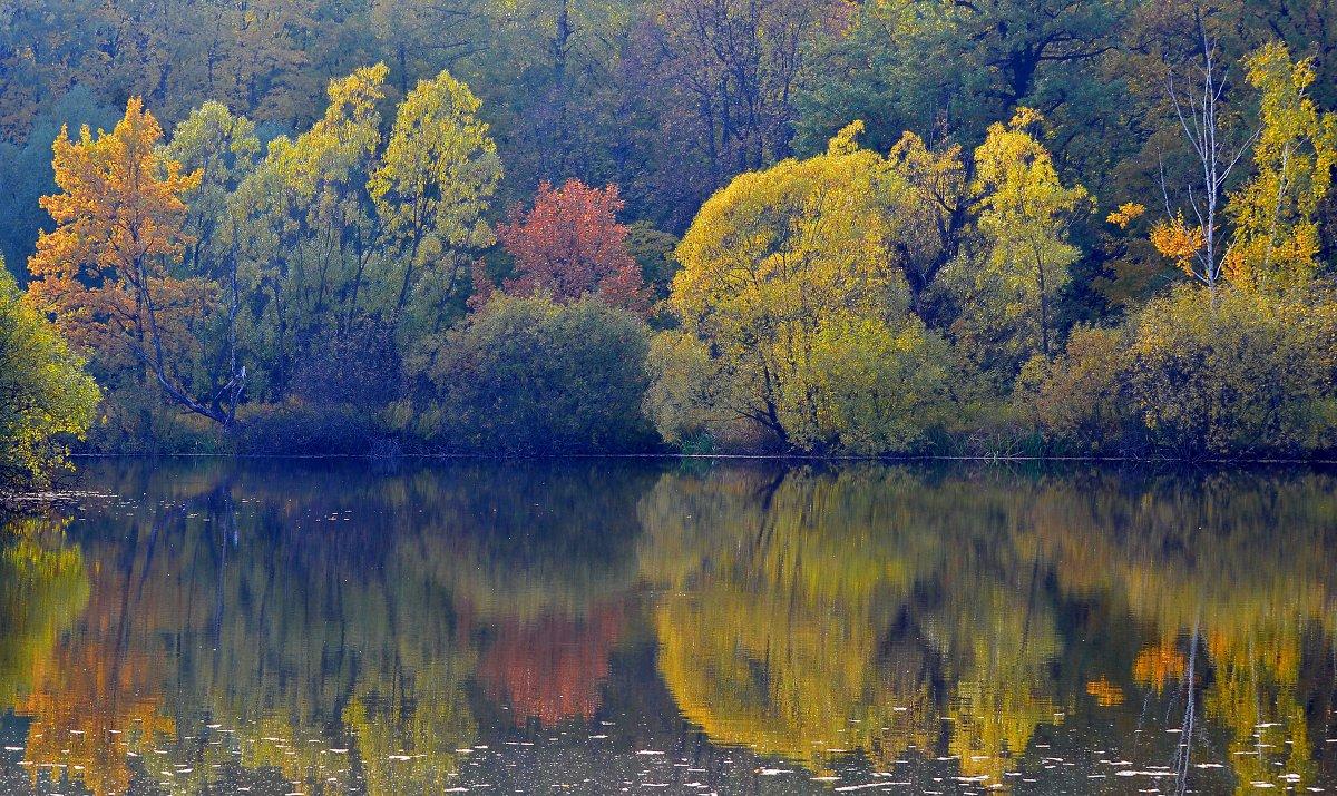 На мольберте краски - золото с багрянцем... - Ольга Русанова (olg-rusanowa2010)