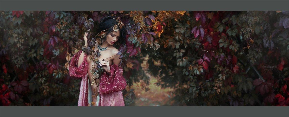 Осень - Надежда Шибина