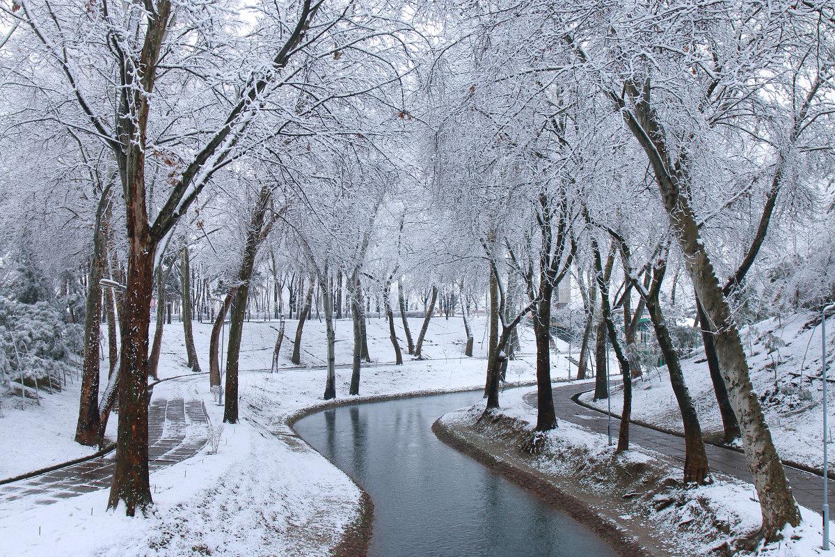 фото ташкент зимой