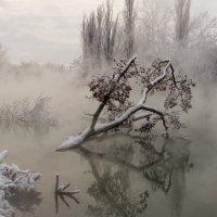 Туман над водой . :: Александр Плеханов