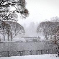 Снегопад :: Дмитрий Печенкин