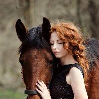 солнышко рыжее) :: Анна