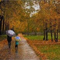 Осень,дождь,зонты... :: Виктор Колмогоров