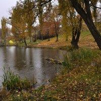 Грустила осень об ушедшем лете... :: Рудая Галина