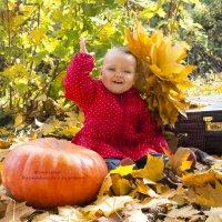Осень золотая :: Елизавета Хисмадинова