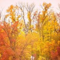 Осенью любовь ярче! :: Анастасия