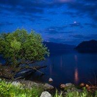 ночная тишина :: Наталья Буданова