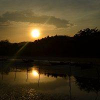 Луч заходящего солнца :: Надежда