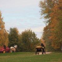 Осеннние краски Коломенского :: Evgeny Manakin