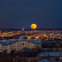 Суперлуние 14.11.2016 года :: Владимир Максимов