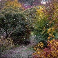 Первый снег :: Марк Э