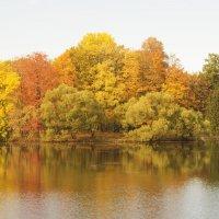 Над озером :: kbg54
