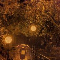 Навстречу дождю и ночи :: Сергей Яворский