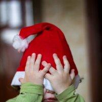 Ах, эти утомительные новогодние праздники! :: Владимир Печенкин