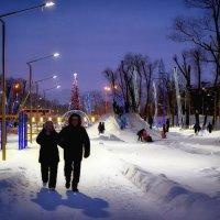 Новогодние прогулки :: Сергей Вишняков