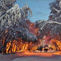 Североморск в Новогодном интерьере :: Кай-8 (Ярослав) Забелин