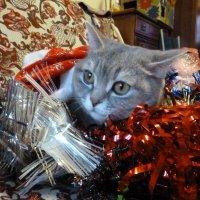 К встрече Нового года готова! :: Надя Попова
