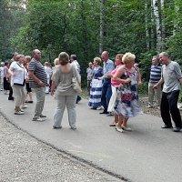 Танцаллея в измайловском лесопарке. :: Oleg4618 Шутченко