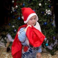 Помощник Деда Мороза. :: Ольга
