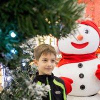 новогоднее настроение :: Наталья
