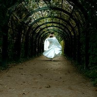 Танец невесты :: Александра Кашина
