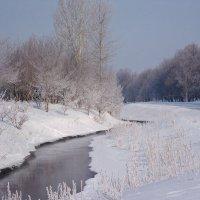 Весенний ручей. Самарская область :: MILAV V