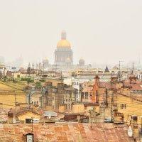 Туманный Петербург :: Кристина @BeshenBelka