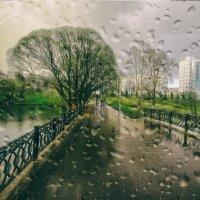 Вессение дожди :: Евгений