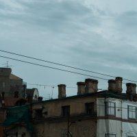 Петроградская сторона :: Мария Киносян