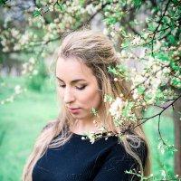 Цветут сады! :: Ирина Ширма