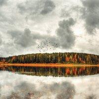autumn depression :: Aleksandr Tishkov