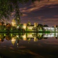 Новодевичий монастырь. Москва. :: Вячеслав Мишин
