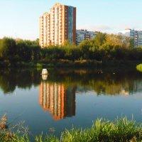 Парк в Мытищах :: Дмитрий Денисов