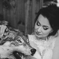 И снова вдвоём, волк и она.... :: Ангелина Хасанова