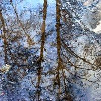 Весна :: Валерий Баранчиков