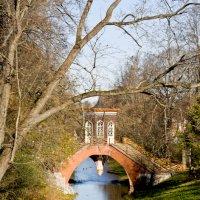 Крестовый мост. Осеннее отражение. :: Татьяна Петранова