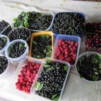 Летний урожай :: Дмитрий Никитин