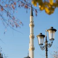 Сердце Чечни :: Muhammad