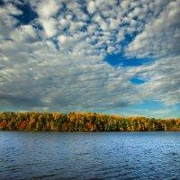 Краски осени. :: Алена Торопов