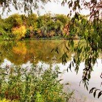 Осень отражается в реке... :: Тамара (st.tamara)