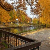 Осень в нашем парке :: Владимир